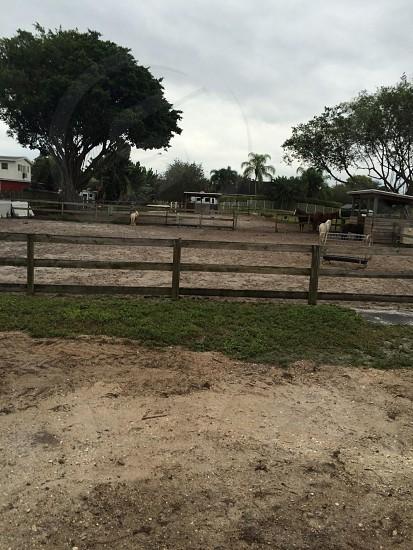 #farmlife photo