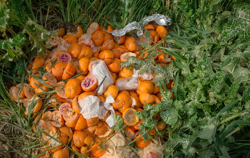 Pile of bright freshly squeezed orange rinds thrown outdoor on green vegetation photo
