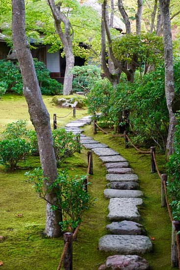 Japanese gardens near Arashiyama  photo