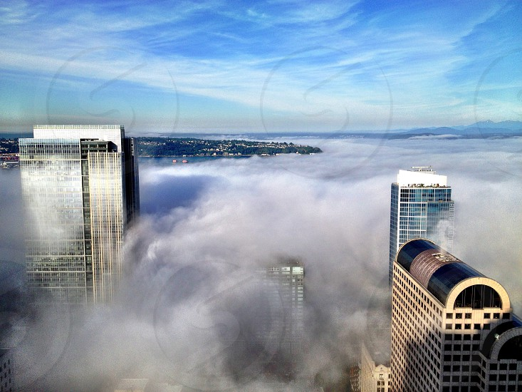 high rise building on foggy view photo