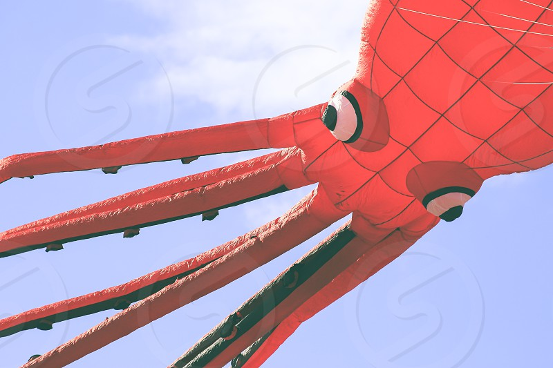Flying kite with Octopus-shaped animal photo