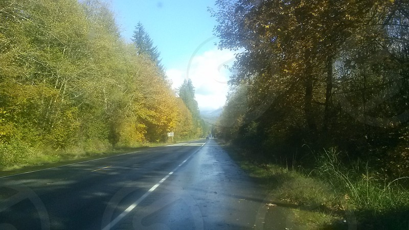 Down the road photo
