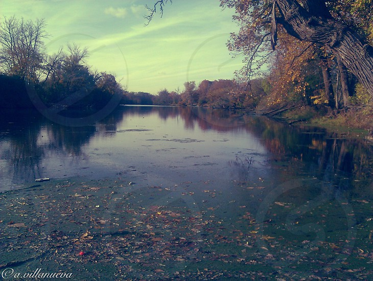 October of 2012 fall picture of des plaines river. Illinois  photo
