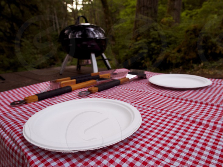 red and white patterned cloth with some barbecue photo
