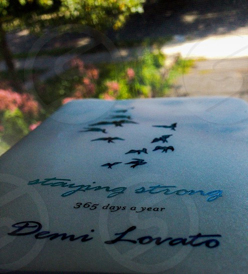 Staying Strong 365 days a year by Demi Lavato book photo