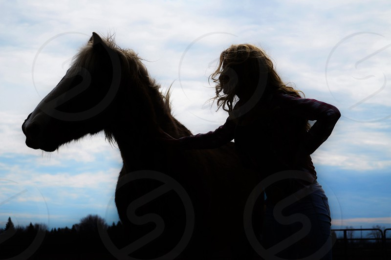 Horse woman cowgirl companionship companion people silhouette farm photo