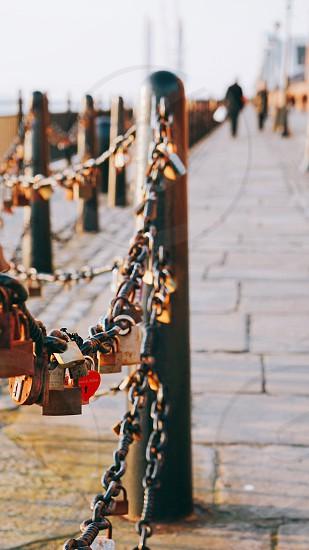 love locks hanging on chain photo