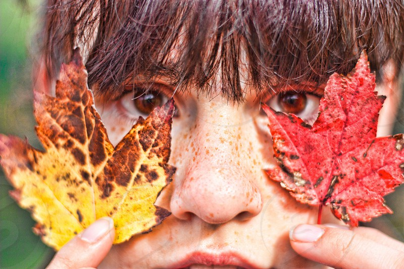 person holding yellow and red autumn leaves photo