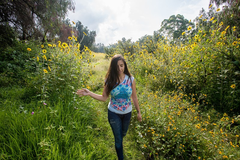 Young woman in a filed of sunflowers  photo