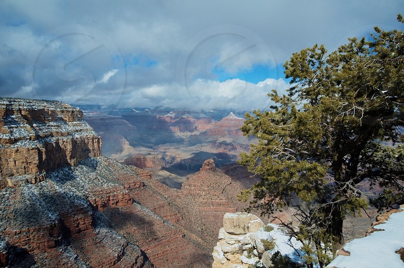 Grand Canyon National Park - Arizona photo