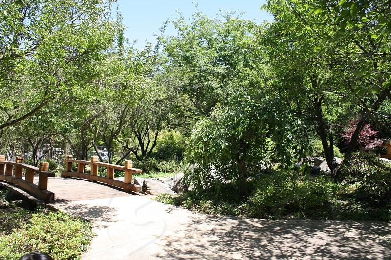 brown bridge near green trees during daytime photo