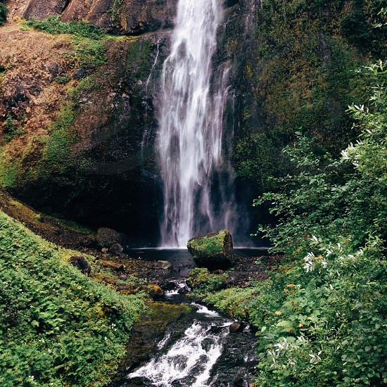 waterfall over green plant covered rocks photo