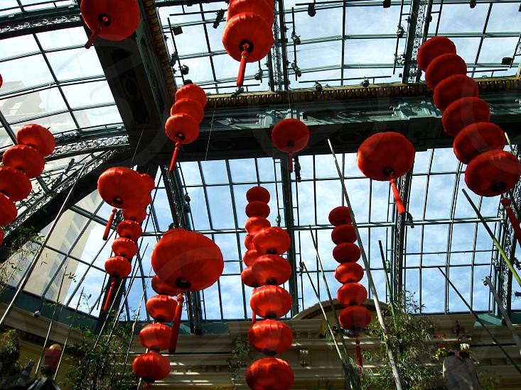 Red Chinese Lanterns photo
