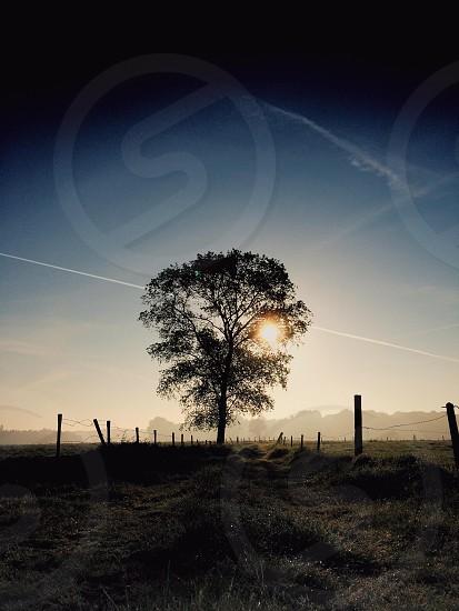 Rural Flanders photo