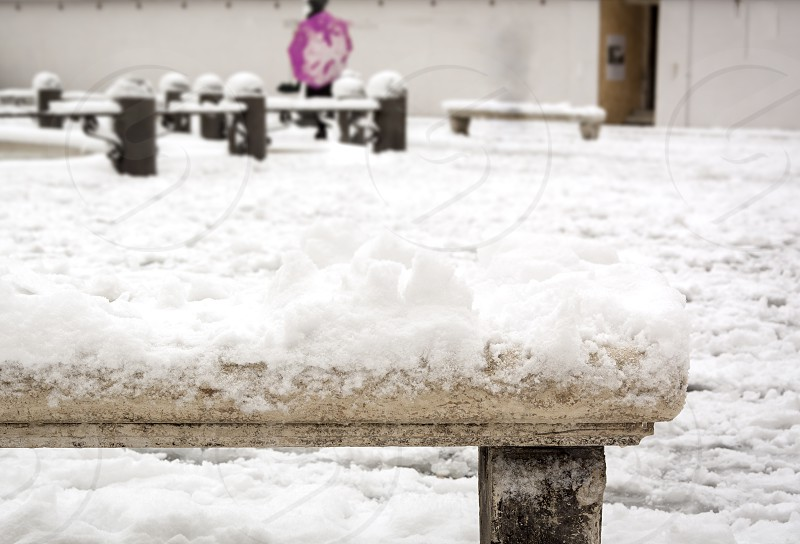 close-up view of an old decorated snow-covered marble bench in Piazza Navona in Rome Italy photo