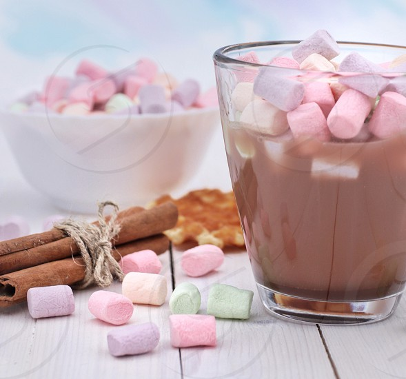 Cacao with marshmallows photo