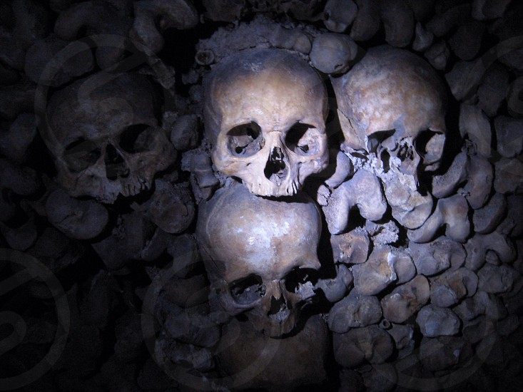 Catacombs in Paris photo