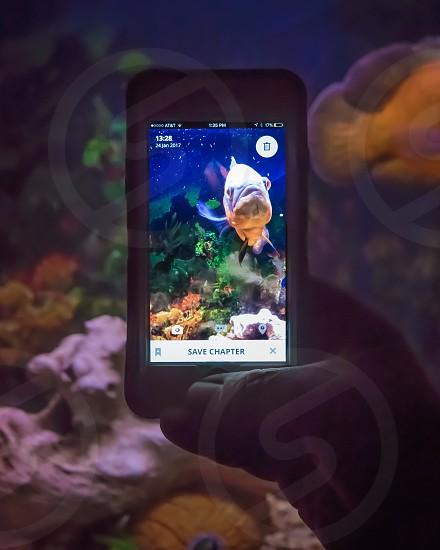 SCRIBA mobile App in use photo