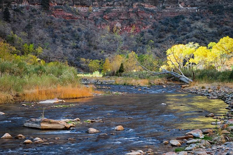 Virgin River Zion National Park photo