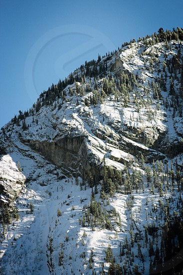 Mountain trees snow winter Sky Banff photo