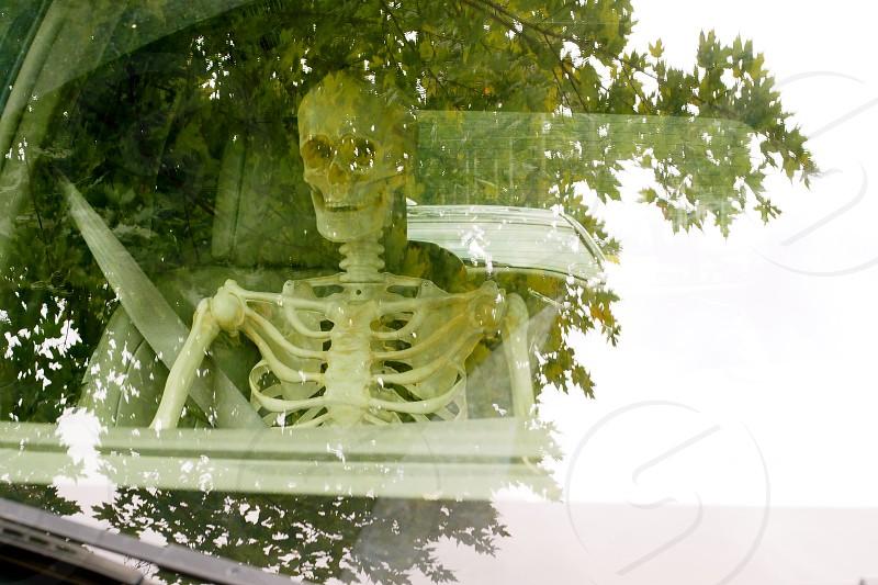 Creepy skeleton passenger       photo