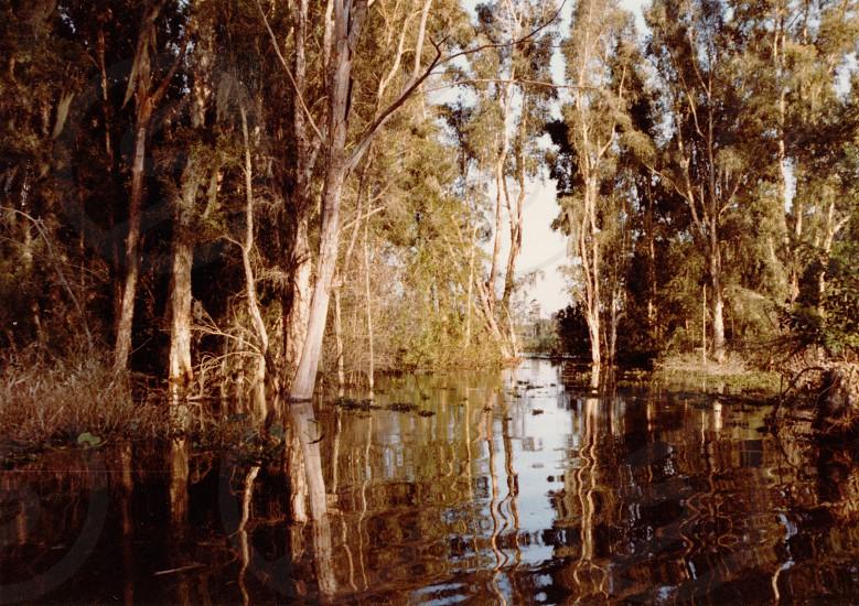 Lake Okeechobee Fl photo