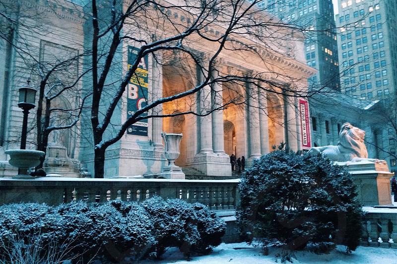 New York Public Library (NYPL) winter 2013 photo