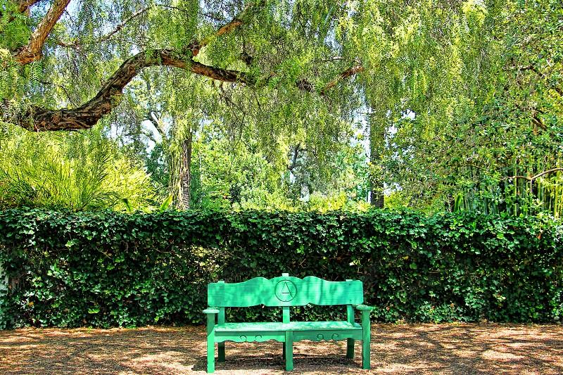 Green bench at Rancho Los Alamitos Long Beach CA under green willow trees photo
