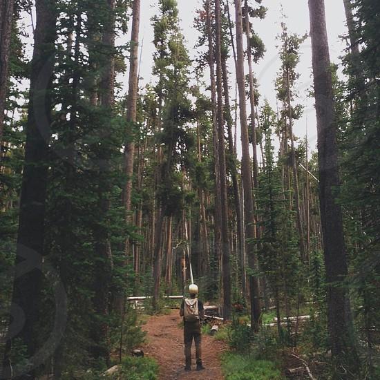 Hiking in Yellowstone  photo