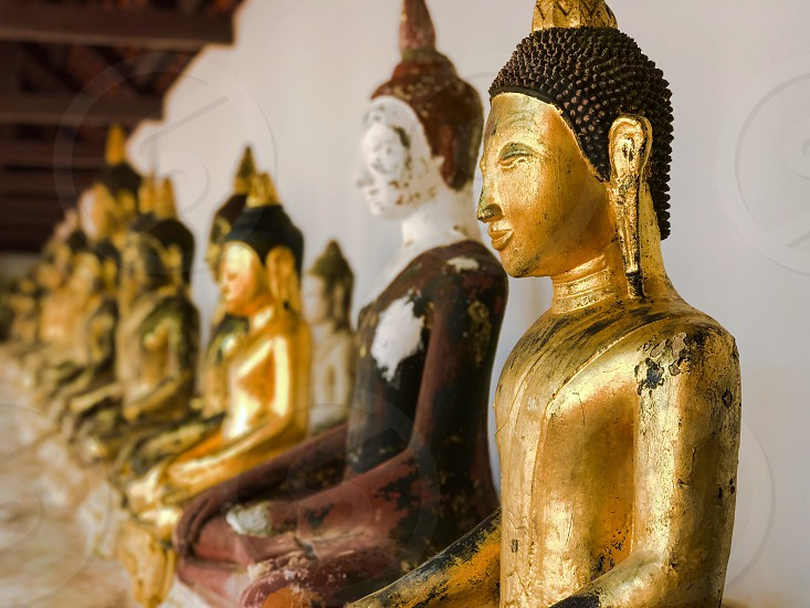 Buddha image statue Buddhist Buddhism temple gold golden religion row arrayed sacred pray worship homage sculpture art ancient antique artifact Thailand chiya suratthani southeast Asia photo