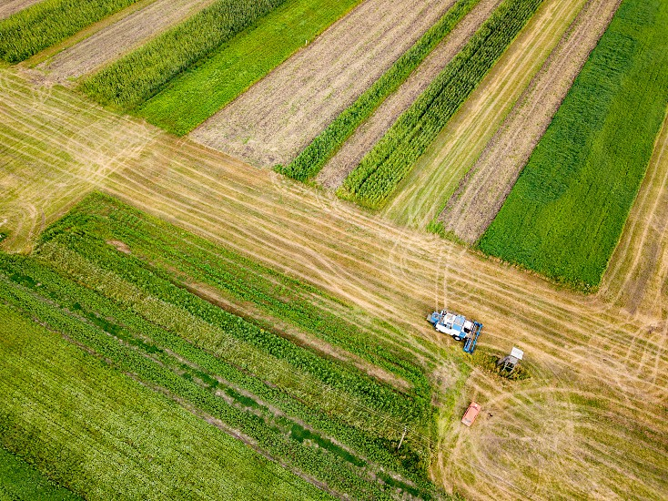 Preparation of soil for sowing of winter crops. Aerial view from the drone of the field after harvest with combine and red car on it. photo