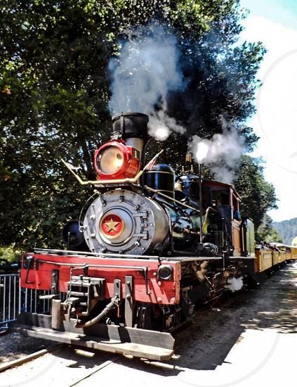 Redwood Steam Train photo