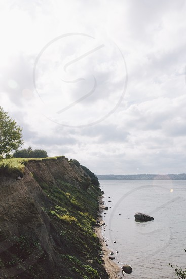 green grass on rock seashore view photo