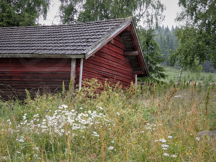 red wooden house photo