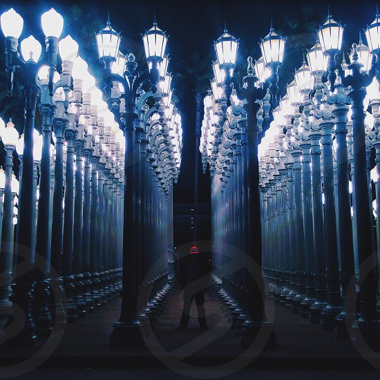 rows of lampposts photo