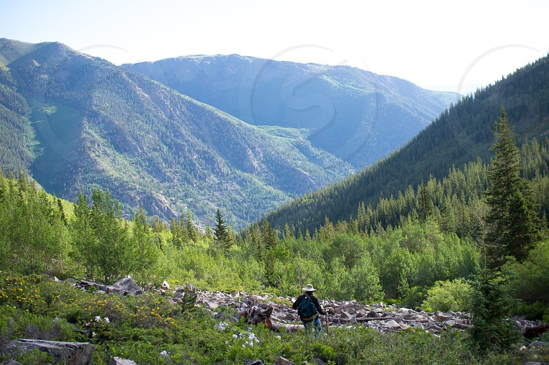 mountains nature trees outdoors hiking trails Rockies photo