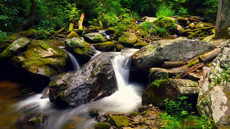 Flowing water outside Anna Ruby Falls GA.  photo