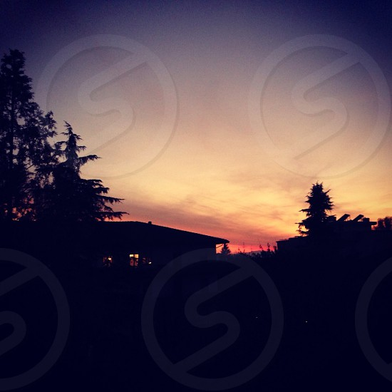silhouette of home and trees in front of sunset  photo