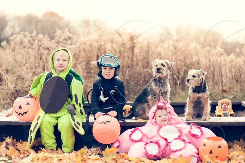 halloween costume costumes children family boy girl dog border terrier starfish turtle scuba diver basket candy autumn leaves october brothers sandbox leaves dress up trick treat goggles shell photo