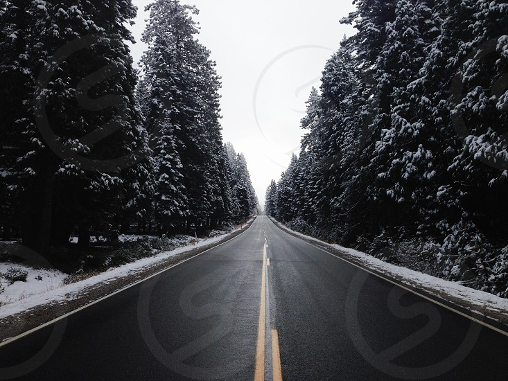 gray cemented road photo