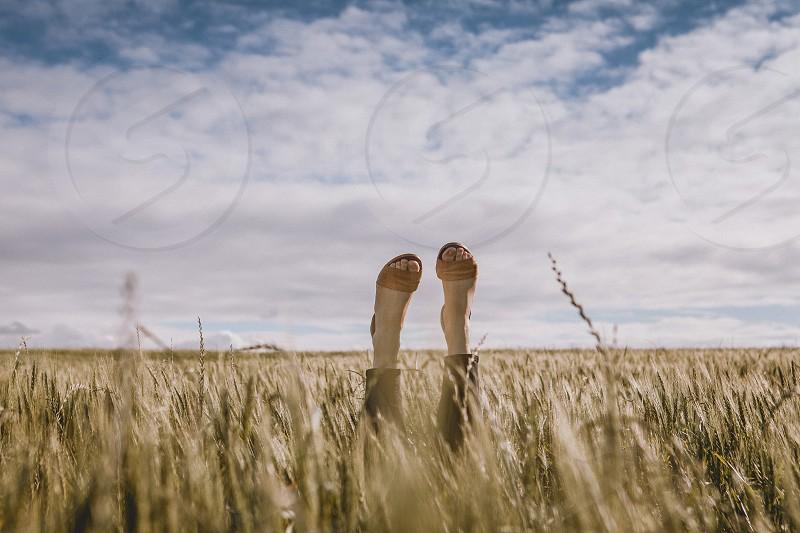 feet wheat grass field sky clouds blue woman women sandals shoes  photo
