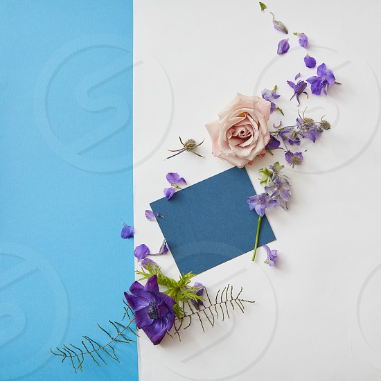 Copy space of navy blue poster may be used for expressing positive emotions. Poster is designed with help of flowers and two backgrounds: white and turquois. photo