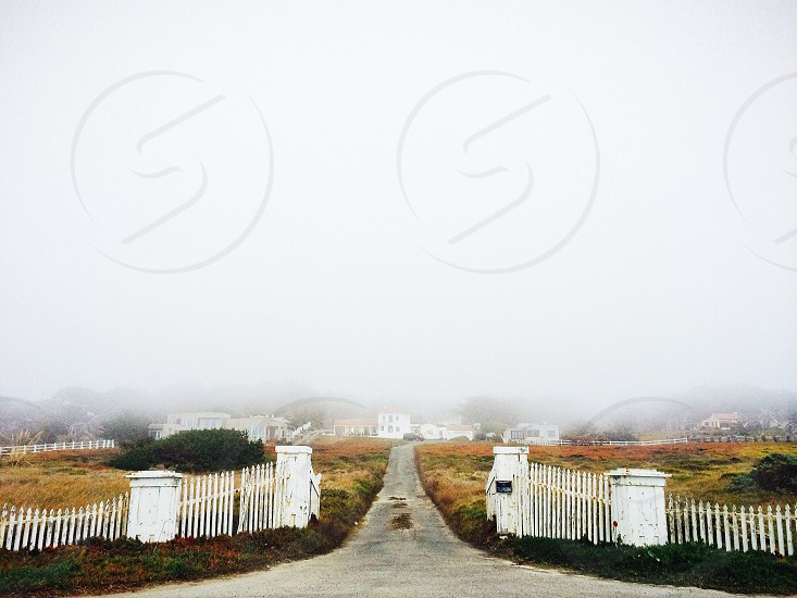view of a gray road during a foggy day photo