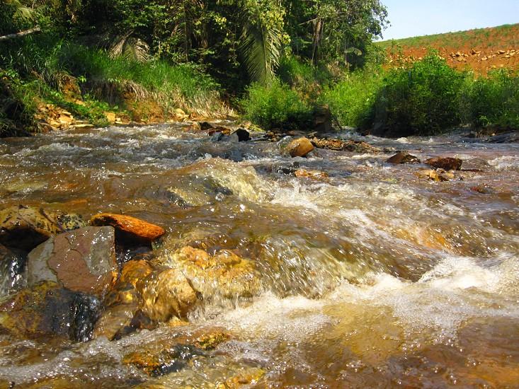 river nature Amazon photo