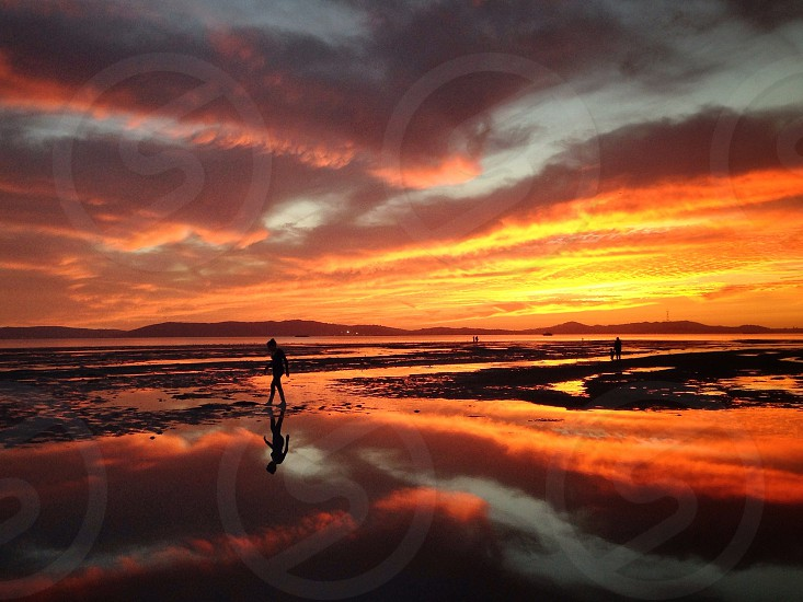 Fiery night and low tide  photo