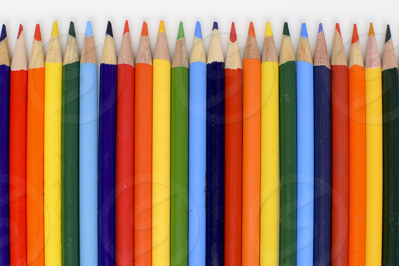 An even row of colored pencils on a white background photo