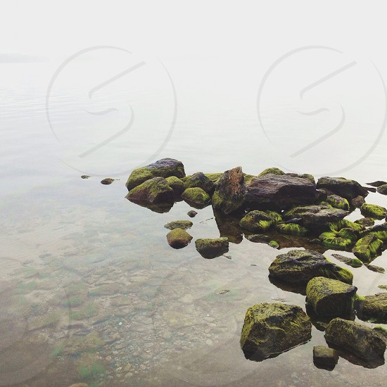 Mossy rocks in the water photo