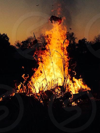 Evening bonfire photo