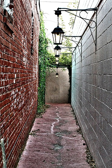 The Alley photo