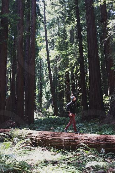 man in black jacket walking on log photo